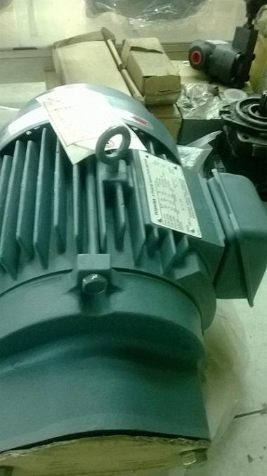 Motor điện 3 pha TOSHIBA
